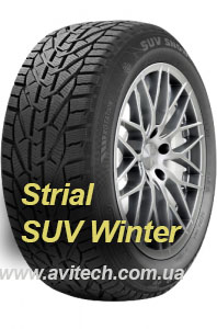 SUV Winter
